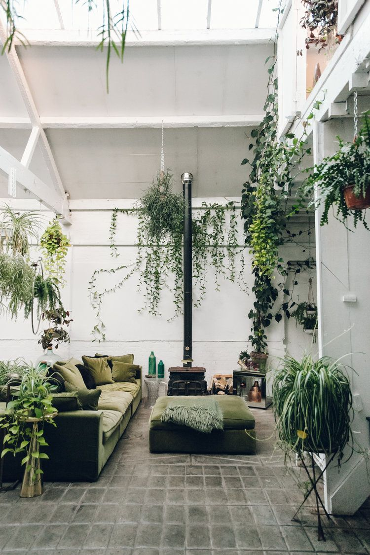 inside clapton tram - a plant-filled warehouse space | clapton