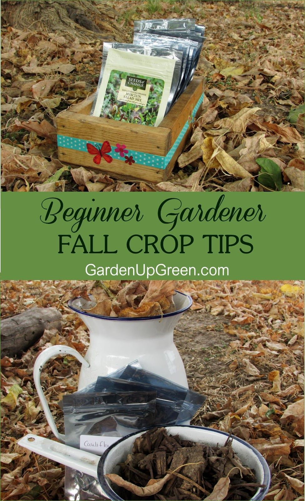 It's never to early to get a head start on fall planting.  Getting ready begins in the summer.  Get these helpful tips for success.