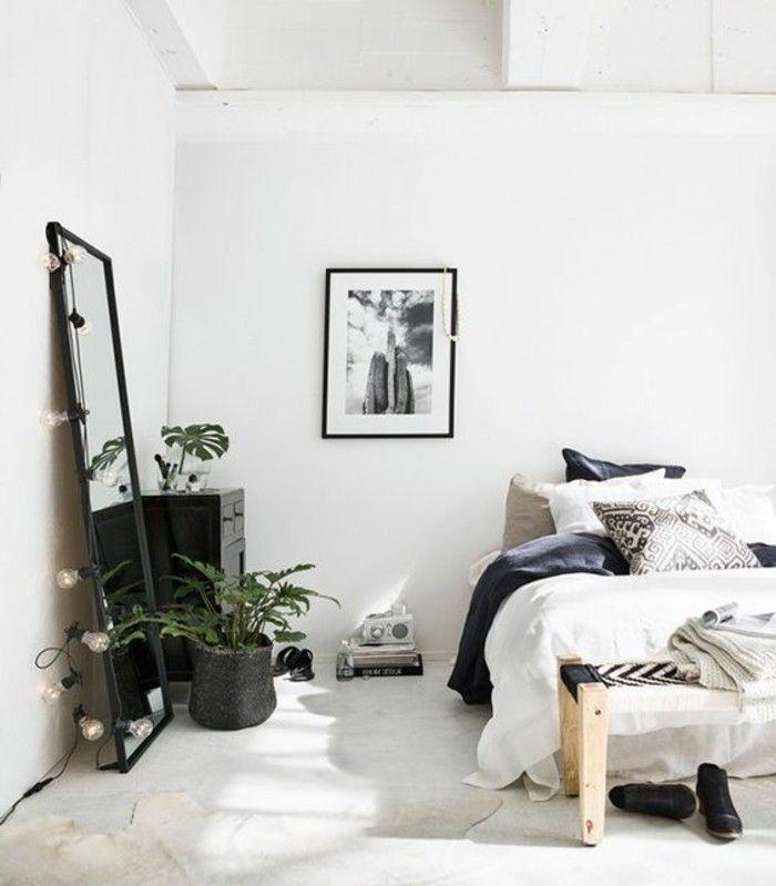 Plante Verte Dans Une Chambre A Coucher