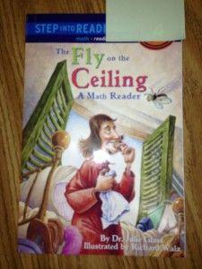 FlyCeiling