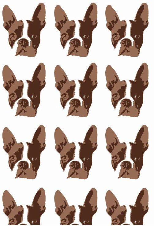 Boston Terrier Wallpaper Dog Adorable