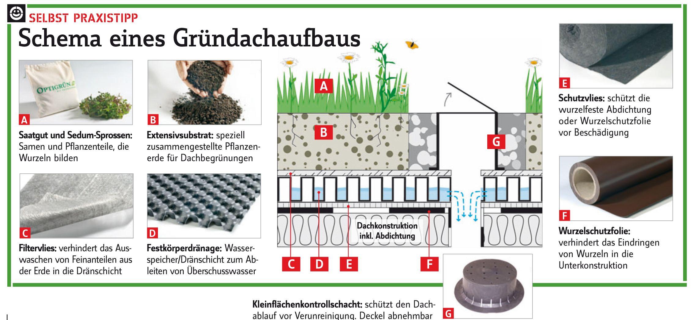 gartenhaus mit gründach selber bauen | ihrer umgebu gründächer