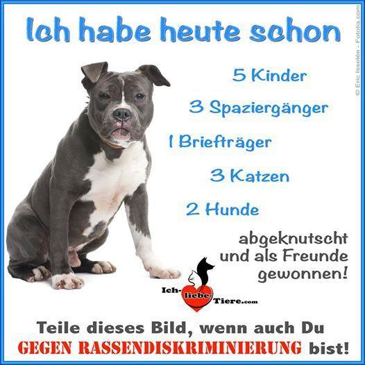 Funpot Khund Jpg Von Wurm Hunde Zitate Tiere Hundespruche