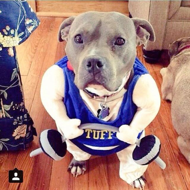 Tuff Says Don T Miss Your Chance To Get 20 Off Your Order For Our