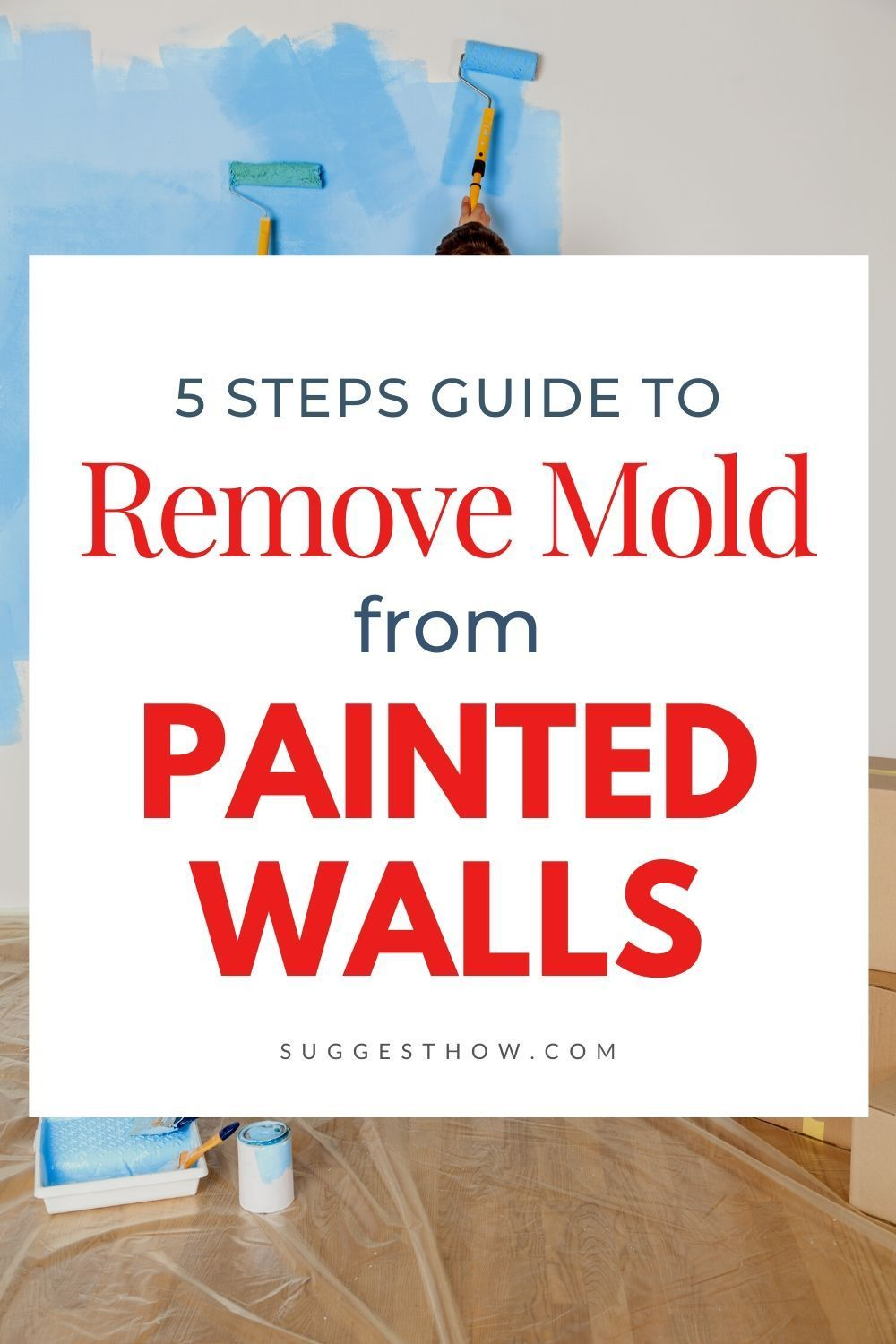 How to remove mold from painted walls easy and simple