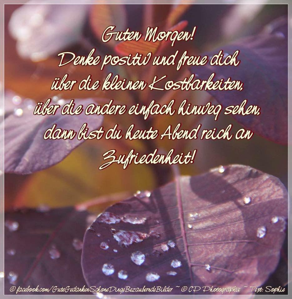 Bild Spruche: Liebe Guten Morgen Spruche Bilder