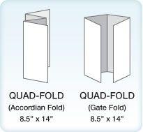 quad fold brochure graphic design class pinterest brochure