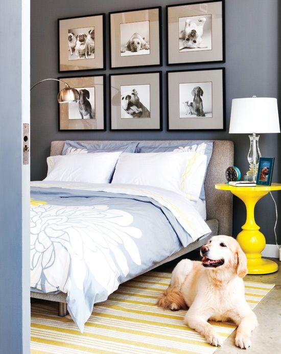 gelbe Akzente Fotowand Hund Blumen Bettdecke