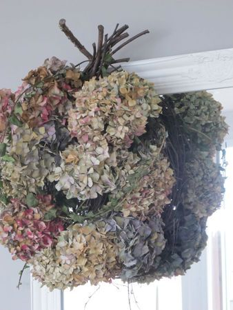 Dehydrated Hydrangeas I Would Do This Is The Deer Didn T Eat Them First Finistere Bretagne Faire Secher Des Hortensias Faire Secher Des Fleurs Hortensia