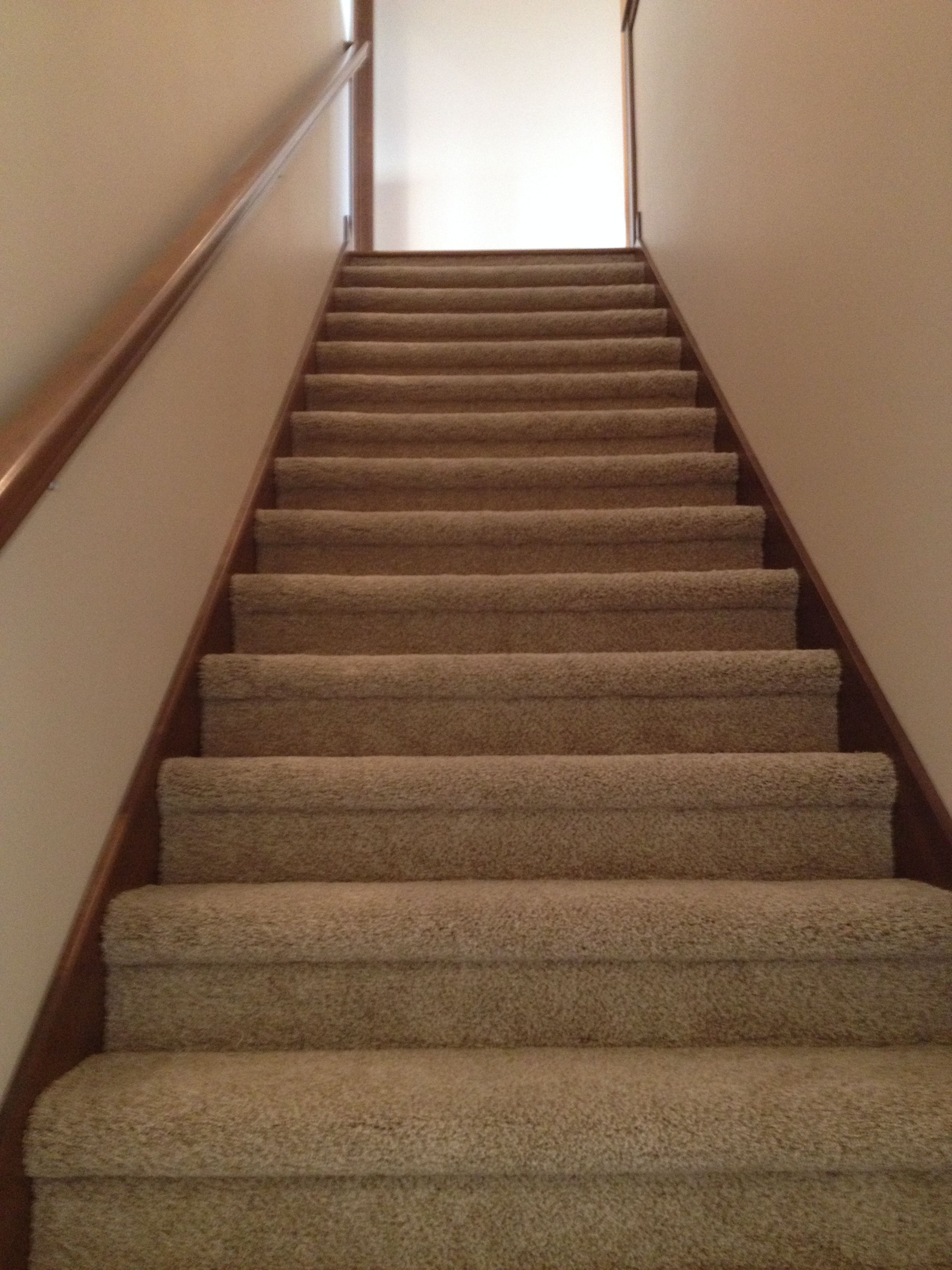 Gerard homes super plush carpet on stairs in a bull nose install design by dennis pinterest - Refurbish stairs budget ...