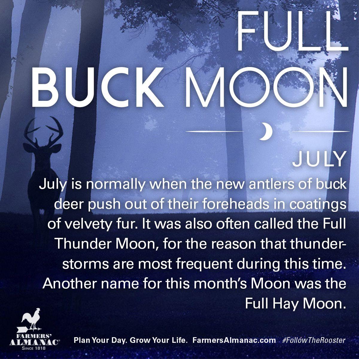 July S Full Moon Full Buck Moon Buck Moon Meaning Moon Meaning
