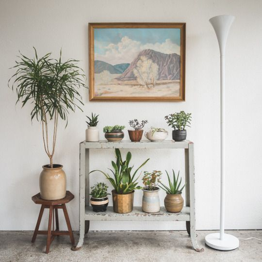 Table becomes plant stand apartment decorating ideas for Small apartment wall decor