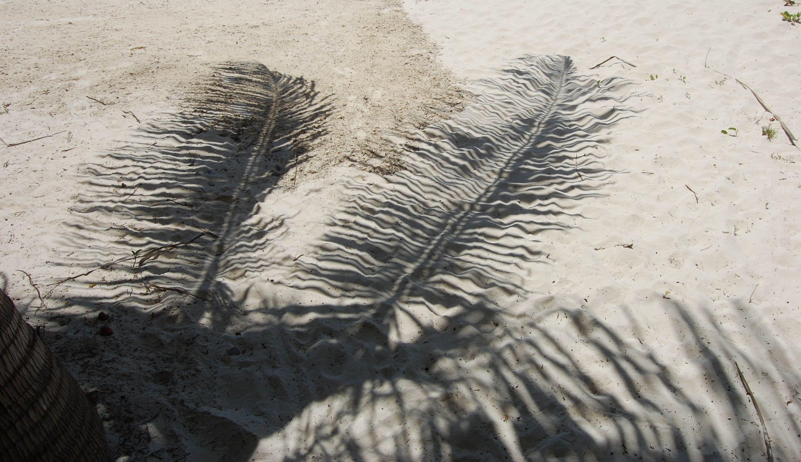 Sands Of Zanzibar Photography Sidsel Solmer Eriksen Med Billeder