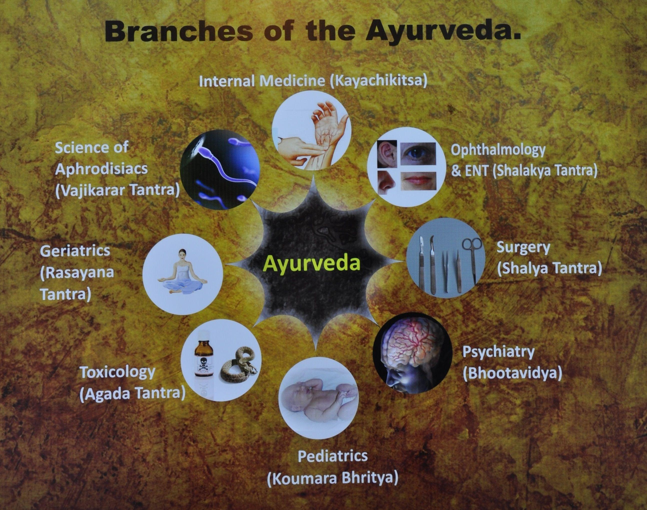 Rasayana Tantra, Branch of Ayurveda medicine