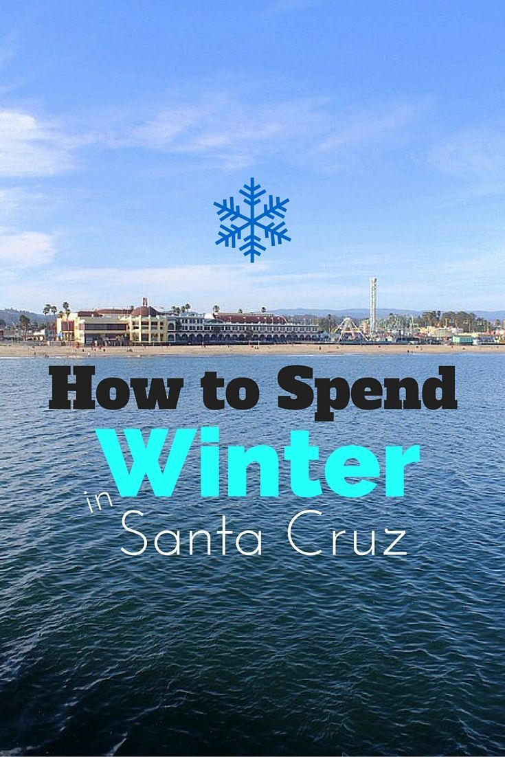 what to do in santa cruz in winter amazing beaches california rh pinterest com things to do in santa cruz with a baby things to do in santa cruz with a dog
