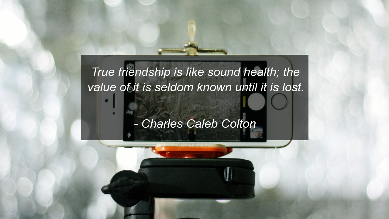 True friendship is like sound health the value of it is seldom true friendship is like sound health the value of it is seldom known until it publicscrutiny Choice Image