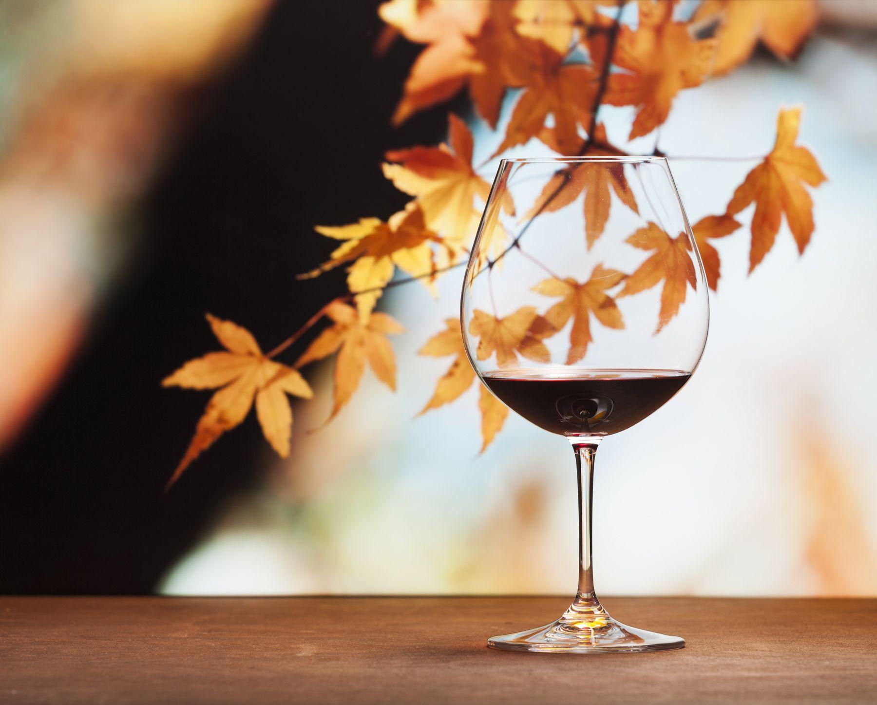 осень бокал красного вина: 8 тыс изображений найдено в Яндекс.Картинках | Красное вино, Картинки, Осень
