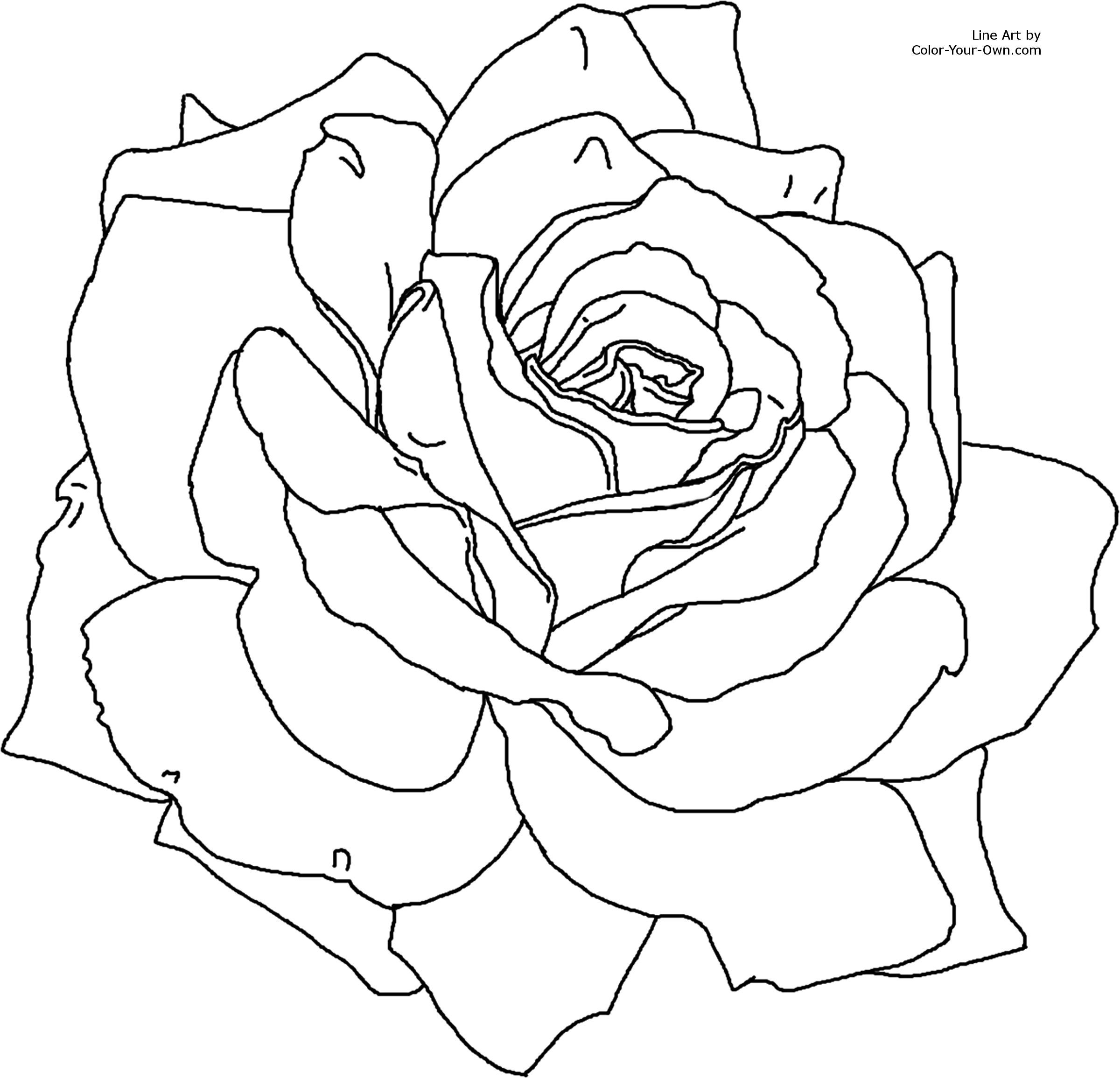 Rose Printable Flower Coloring Pages Rose Coloring Pages