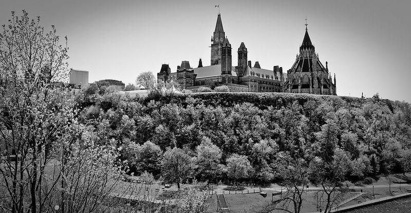 Parliament Hill (www.pointshogger.com)