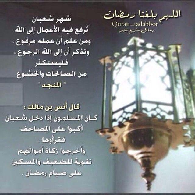 رسائل مشروع تدبر كتاب الله On Instagram اللهـم بلغنا رمـضان شهر شعبان ت رفع فيه الأعمال إلى اللہ Instagram Posts Ramadan Quran