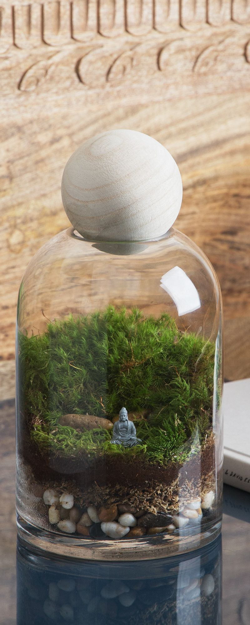 Twig terrariums diy kit for gallon sized container gardeningdiy