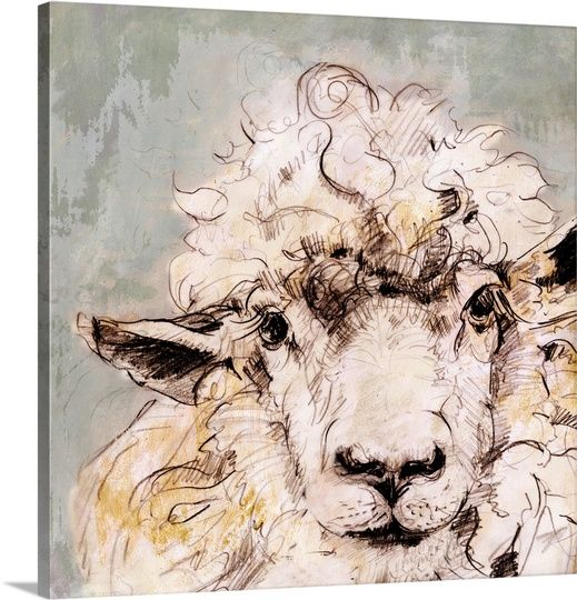 Sheep Solid-Faced Canvas Print