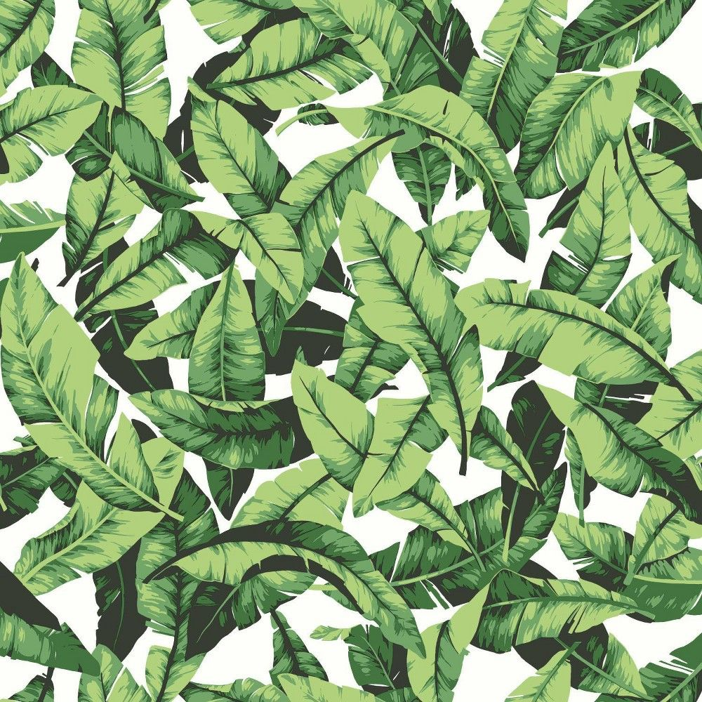 Palm Leaf Peel & Stick Wallpaper Green/White RoomMates