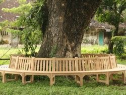 Bench Around A Tree The Owner Builder Network In 2020 Tree Bench Tree Seat Bench Around Trees