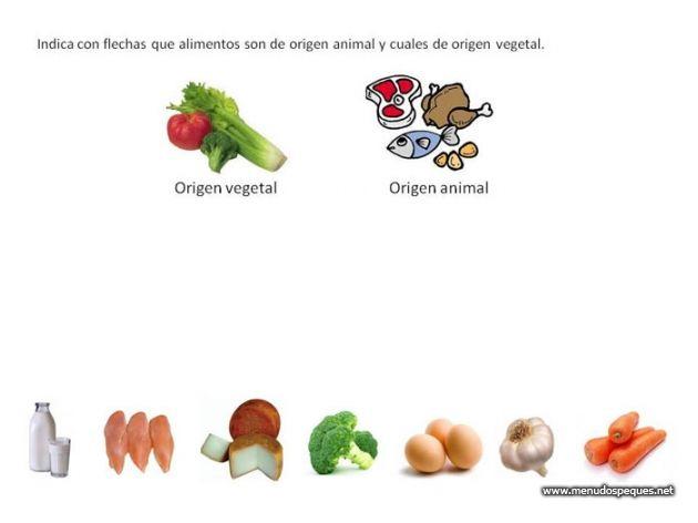 Alimentación Fichas Didácticas Infantil Y Ejercicios Primaria Secundaria Recursos Educativos Para Infantil Primaria Y Secundaria Alimentos Origen Vegetal Alimentos Alimentos Preescolar