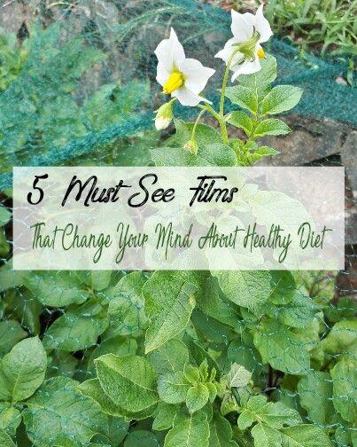 Die 5 besten Dokumentationen über vegane/ pflanzenbasierende Ernährung (gesunde vollwert Ernährung)