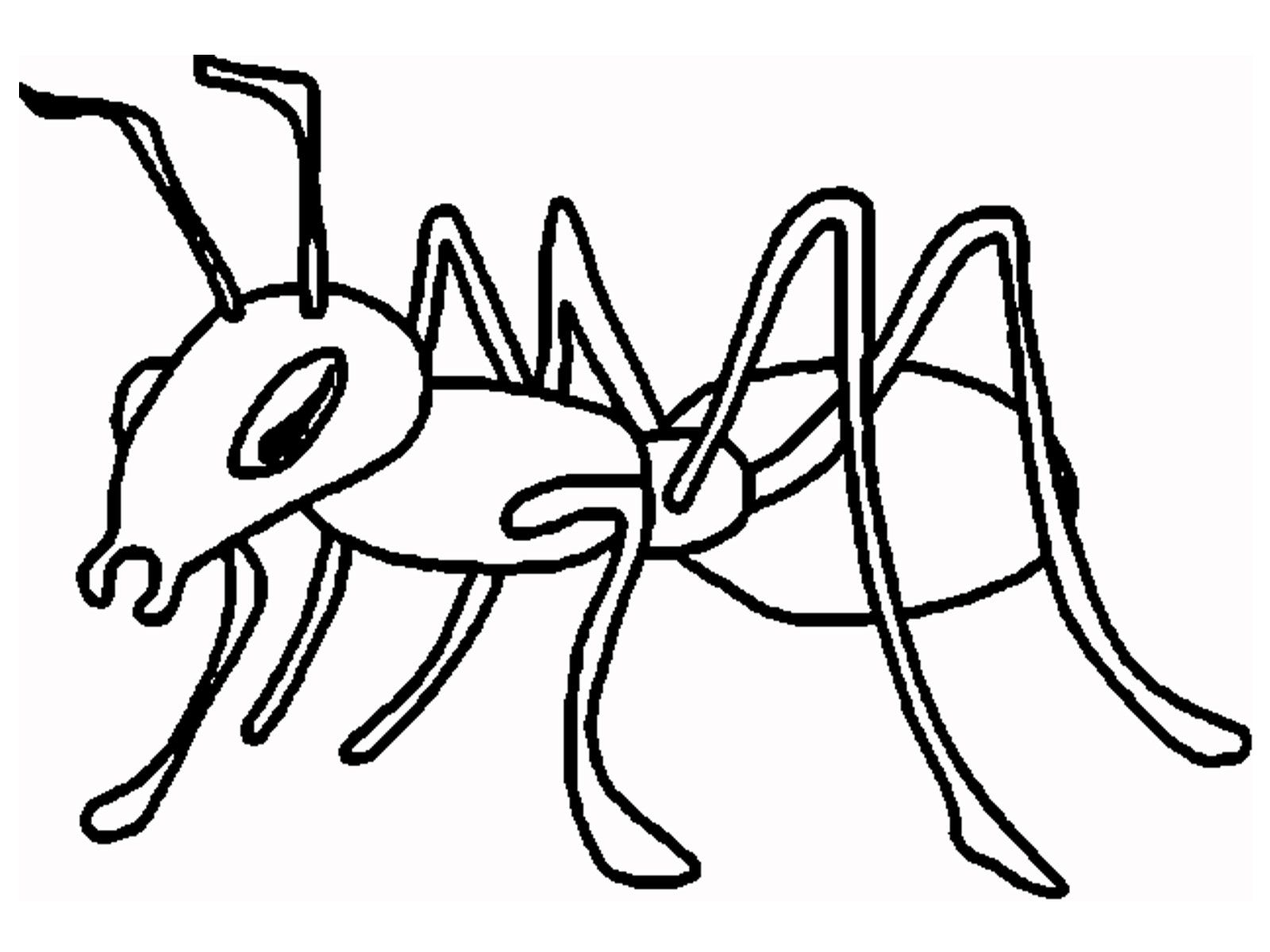 ant coloring page | ant cartoon and printable ants coloring