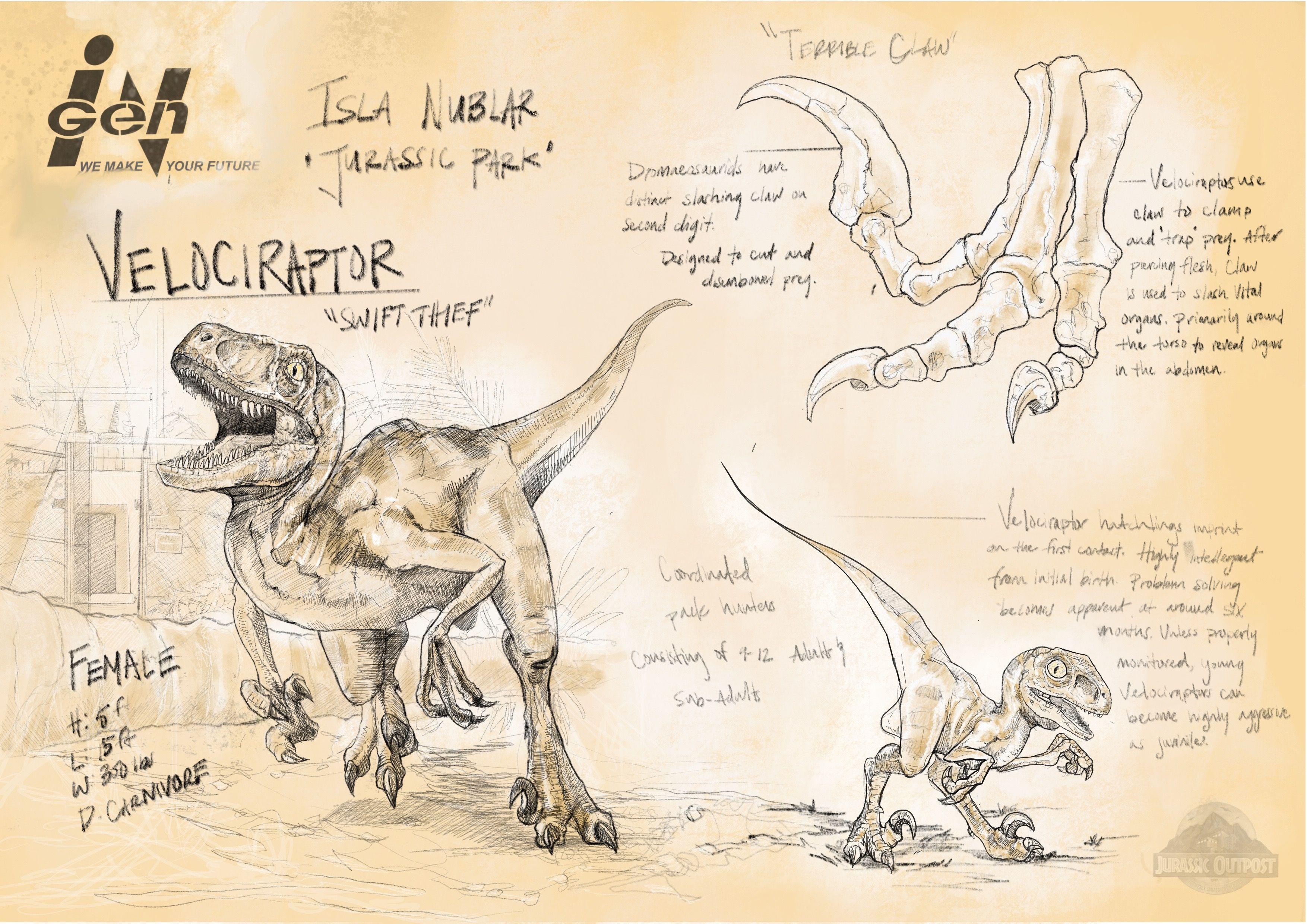 Velociraptor - | Dinosaur | Pinterest | Parque jurásico, Jurasico y ...