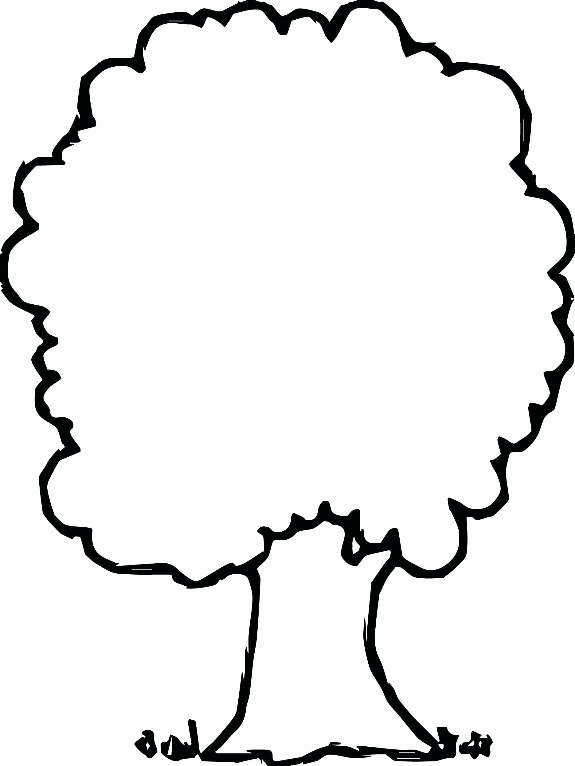 Coloring Tree Branches New Apple Tree Coloring Page Lovely Tree