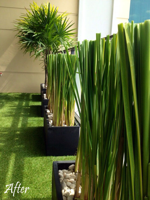 modern balcony designs thailand | Home Inspiration ...