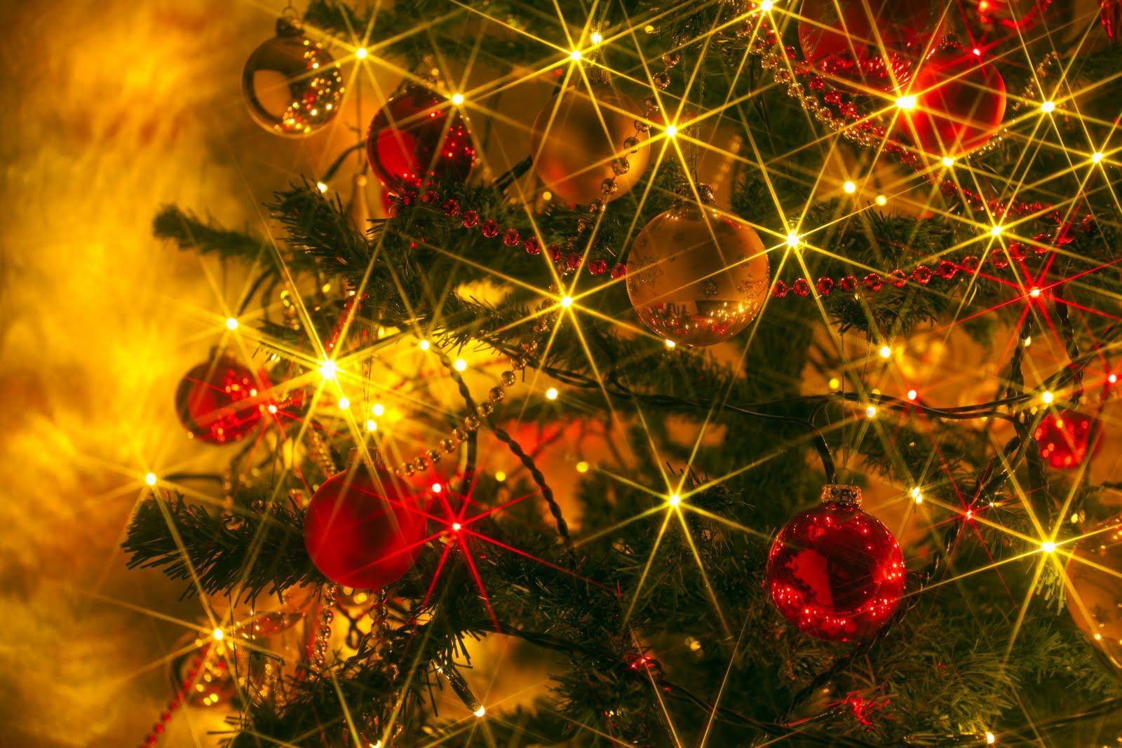 Pin by Kinda Reiter on Breathtaking Beauty | Pinterest | Christmas ...