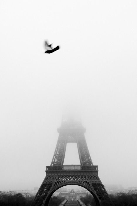 The Eiffel Tower in fog #2 - Terry Richardson