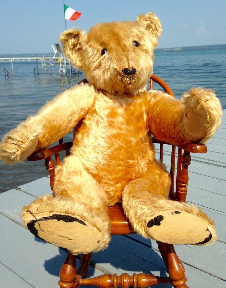 "Antique Vintage Golden Steiff 24"" Bear Jointed Circa 1903"