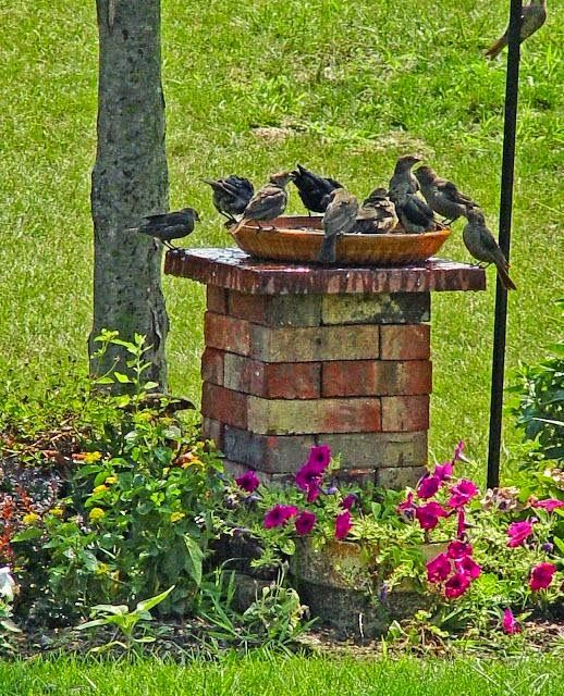 Outdoor Areas: Great Use Of Leftover Old Bricks