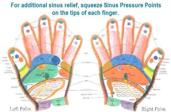 Sinus Relief tips of fingers... balancedwomensblog.com ...