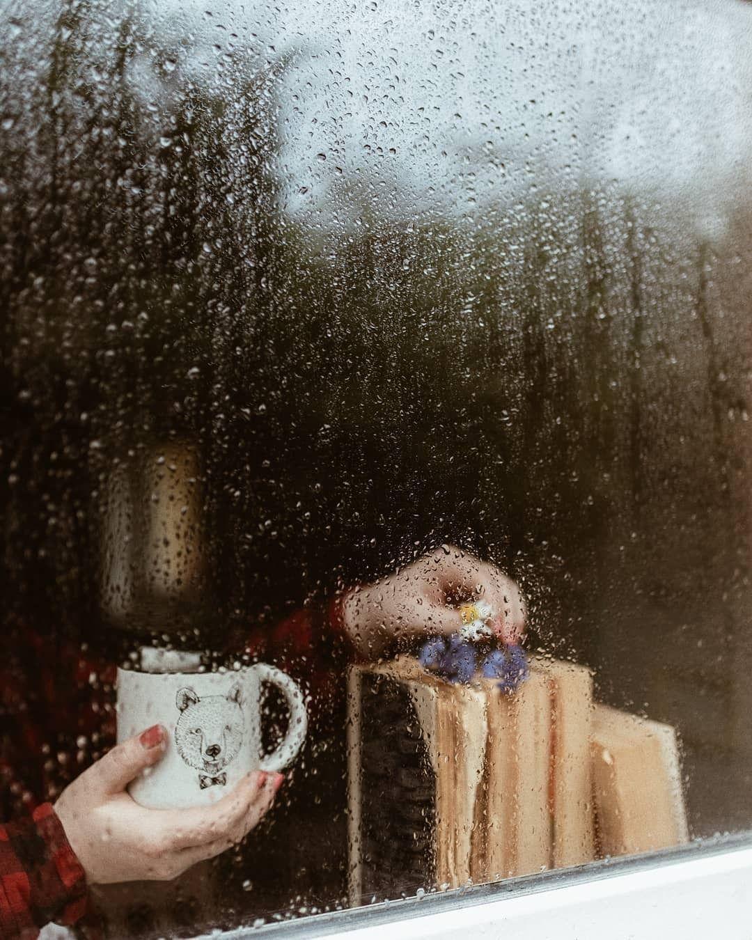 красивая живая картинка утро дождь за окном россии тогда вновь