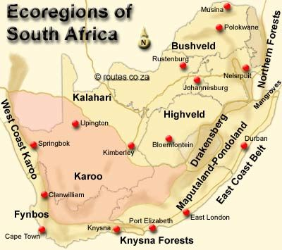 map of the Karoo and South Africa | [)|€ B,O:$ : V € L|) :