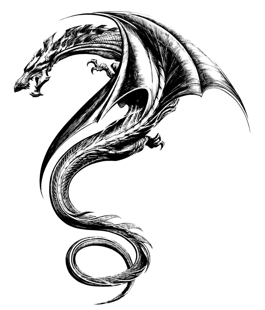 Photo of Tribal Dragon Tattoos