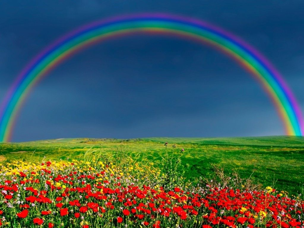 Rainbow wallpaper the rainbow of our life pinterest rainbow rainbow wallpaper voltagebd Choice Image