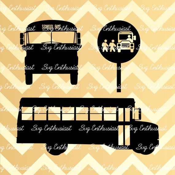 Pin By Camiece White On School Bus School Bus