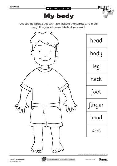 body parts worksheet- can use as a dictionary to label parts