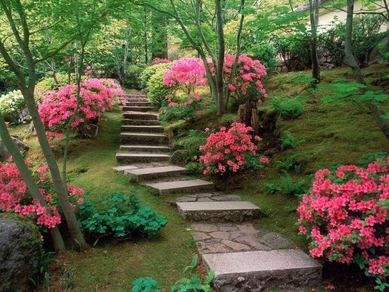 Jakub Gardner Ogrod Kwiatowy Kwiaty W Ogrodzie Kwiaty Ogrodowe Kwietniki Rabat Beautiful Flowers Garden Beautiful Home Gardens Backyard Garden Design