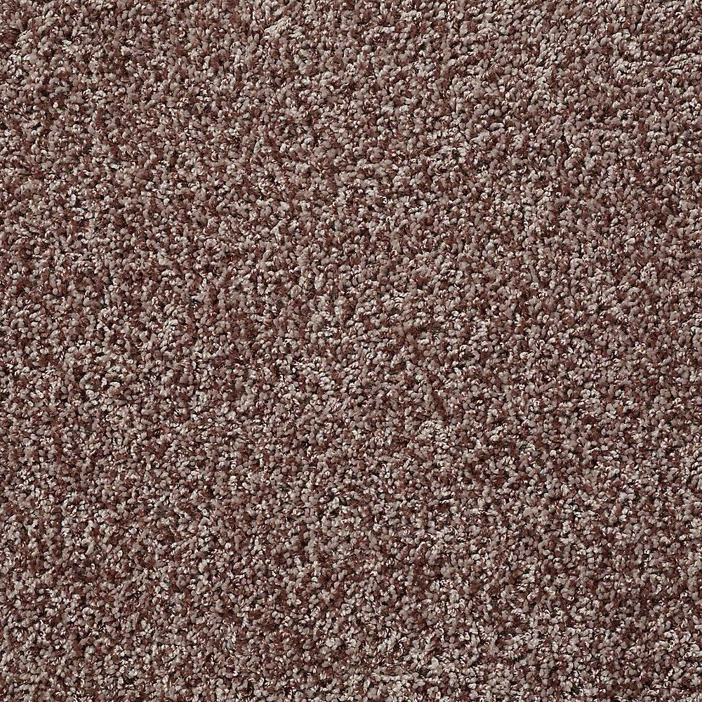 Carpet Sample Charming In Color Coffee Bean in x in