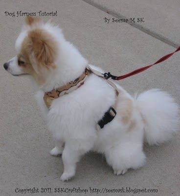 how to make a dog harness
