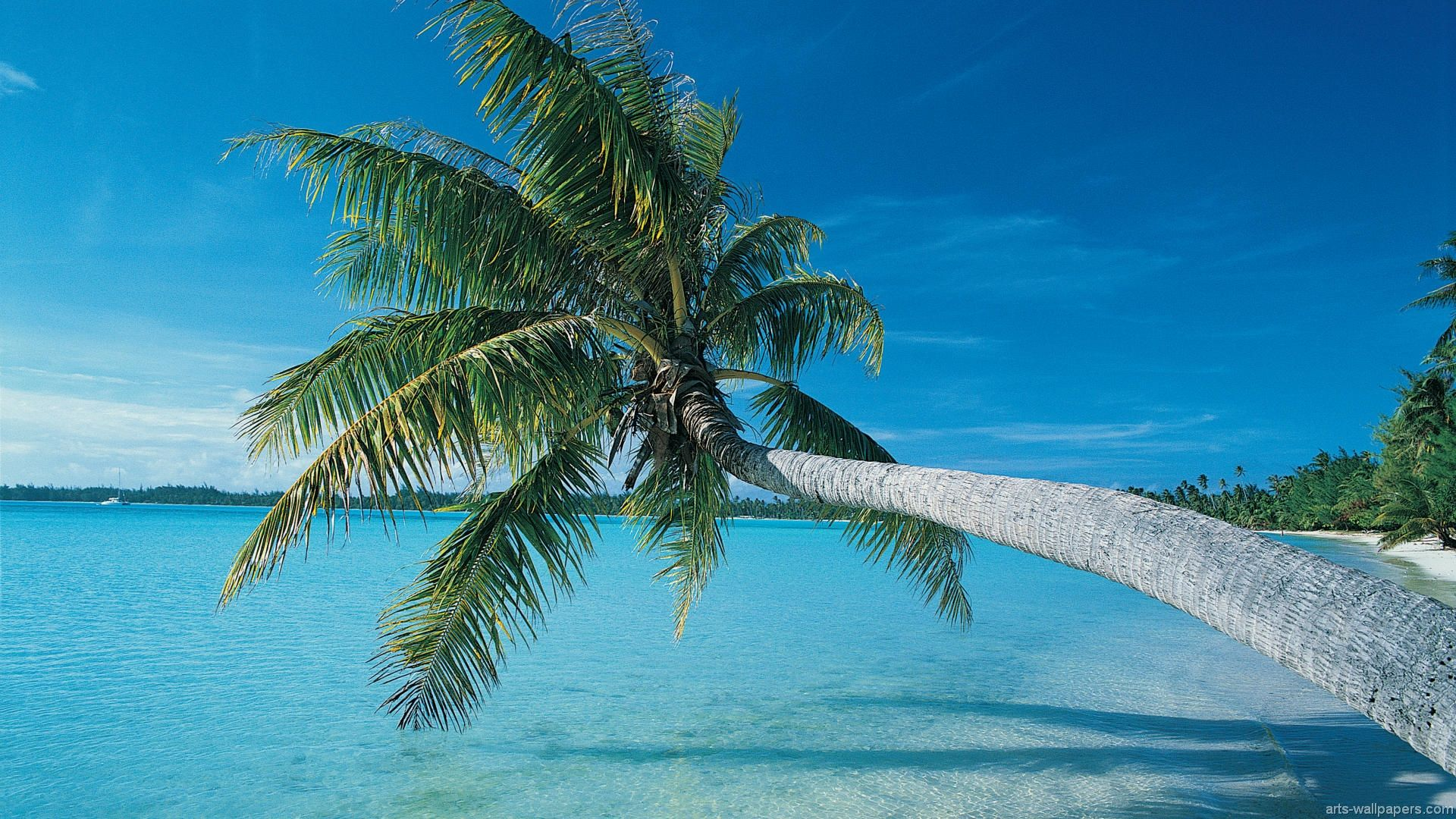 Tropical Island Beach Ambience Sound: Tropical Paradise Wallpapers, Hawaii