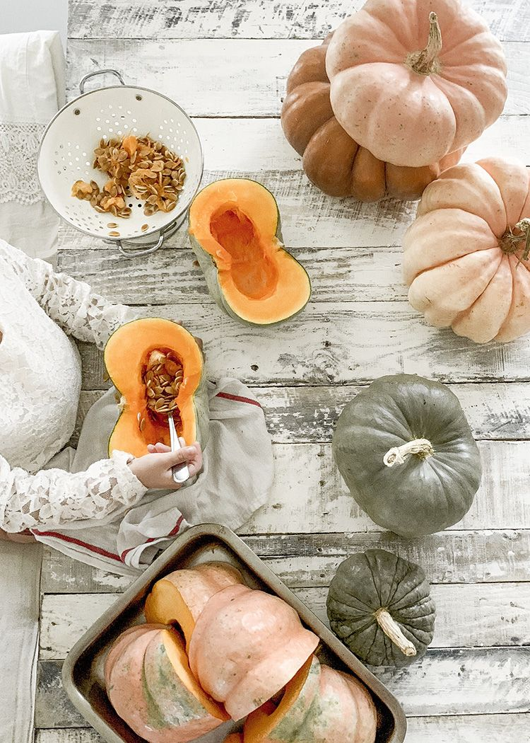 How to harvest save seeds from your pumpkins store
